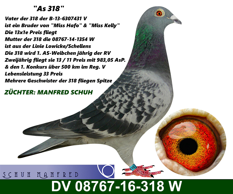 08767-16-318w