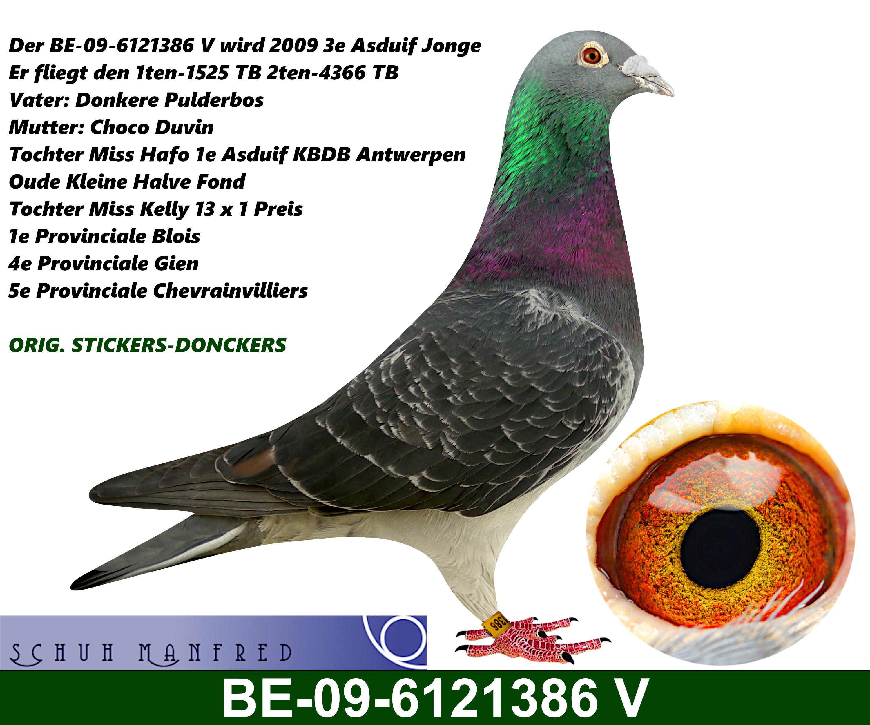 BE 09 6121386v