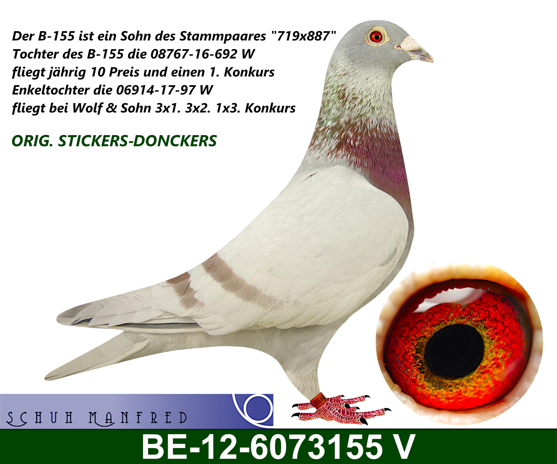 BE 12 6073155v