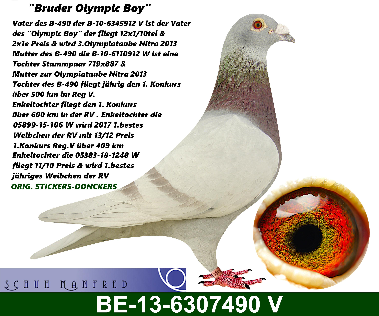 BE 13 6307490v